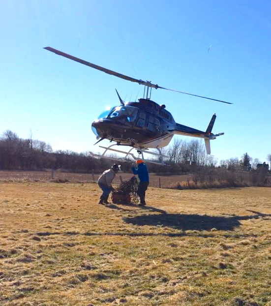 National helicopters additional training
